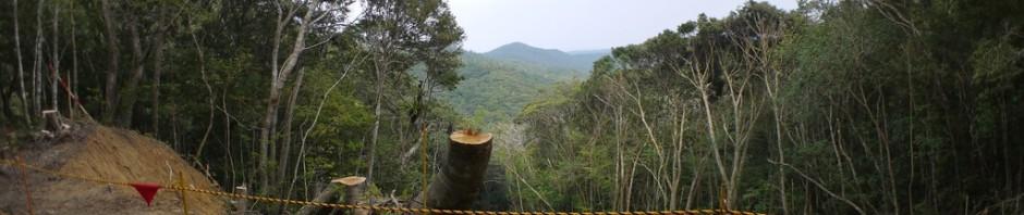 林道復旧工事中につき通行注意