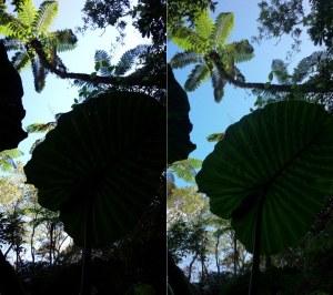 HDR比較(左:オフ,右:オン)